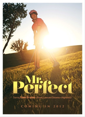 Mr.Perfect_R.jpg