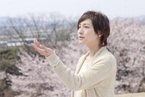 sakura_ウェブ用_R.jpg